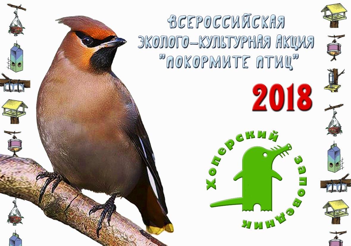 Хопёрский заповедник приглашает всех желающих принять участие в конкурсе на самую интересную кормушку для птиц своими руками.